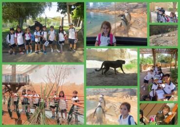 CE1D3 au zoo