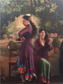 Flamenco (8)